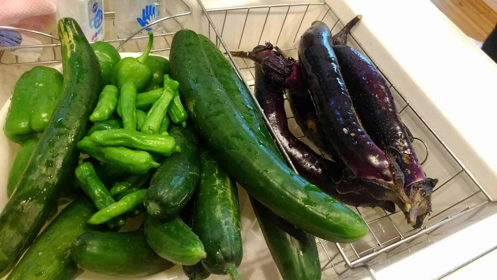 夏休み中もみんなでたくさん収穫してきましたー!